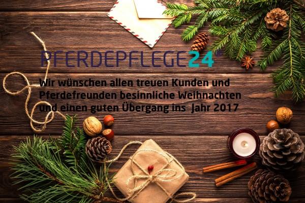 Weihnachtsgruss-2016v2